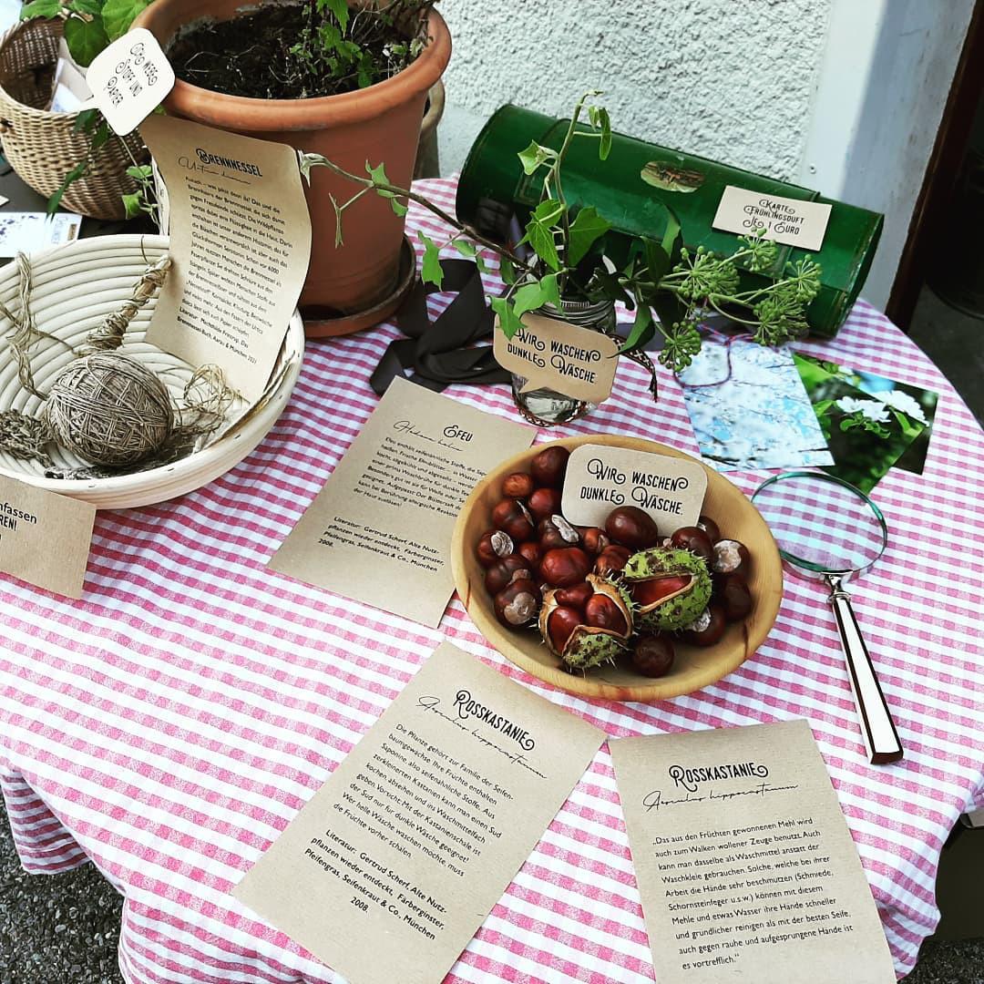 Tisch mit Kastanien, einer Lupe und einem Garn aus Brennnesselfasern